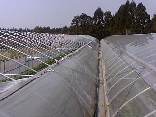 20120405_爆弾台風1.jpg