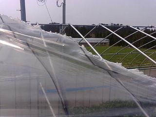 20120405_爆弾台風2.jpg