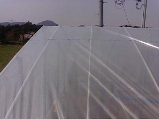 20120408_爆弾台風5.jpg